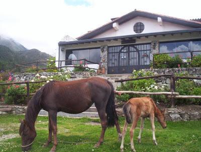 Casa Merida>Merida>La Culata - Venta:900.000 Precio Referencial - codigo: 19-8965