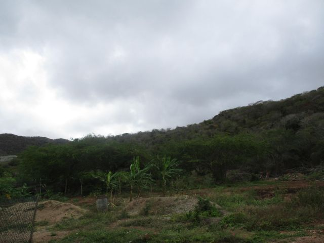 Terreno Nueva Esparta>Margarita>Guatamare - Venta:6.000 Precio Referencial - codigo: 19-9662