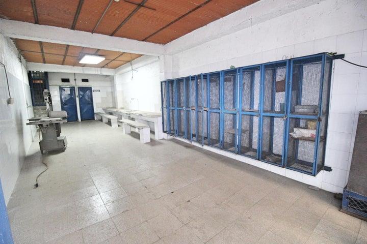 Galpon - Deposito Distrito Metropolitano>Caracas>Mariche - Alquiler:5.000 Precio Referencial - codigo: 19-14568