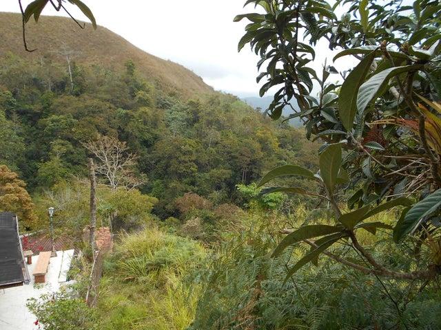 Terreno Miranda>San Antonio de los Altos>El Refugio - Venta:12.000 Precio Referencial - codigo: 19-9341