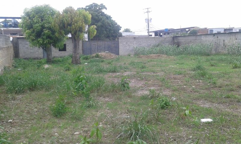 Terreno Yaracuy>Yaritagua>Municipio Peña - Venta:19.500 Precio Referencial - codigo: 19-9690