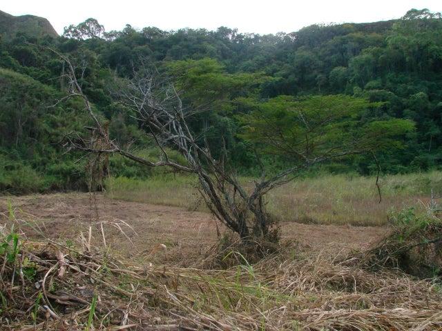 Terreno Miranda>Carrizal>Colinas de Carrizal - Venta:42.000 Precio Referencial - codigo: 19-10382