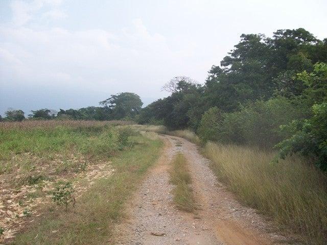 Terreno Yaracuy>Chivacoa>Bruzual - Venta:2.000 Precio Referencial - codigo: 19-10441