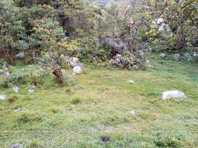 Terreno Merida>Merida>El Valle - Venta:25.000 Precio Referencial - codigo: 19-10501