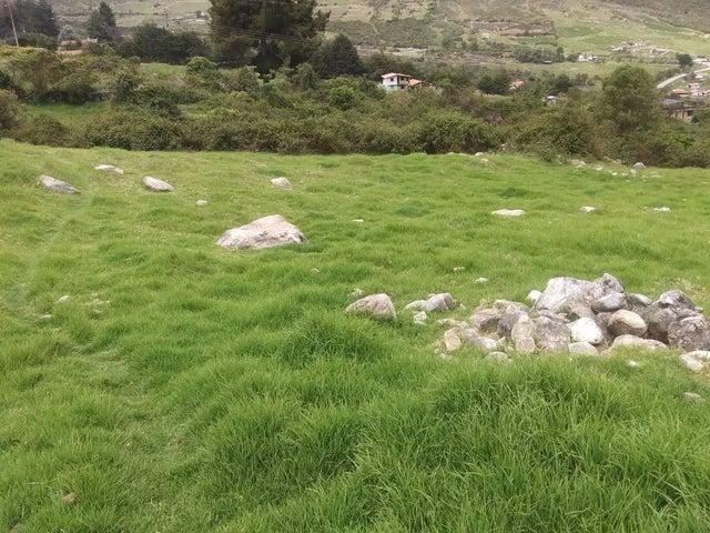 Terreno Merida>Merida>La Culata - Venta:19.000 Precio Referencial - codigo: 19-10677
