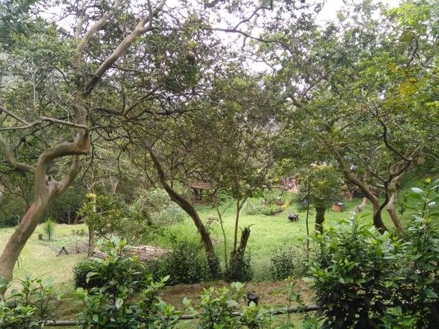 Terreno Merida>Merida>Jaji - Venta:50.000 Precio Referencial - codigo: 19-10870