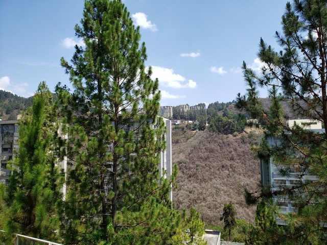 Apartamento Distrito Metropolitano>Caracas>Manzanares - Venta:230.000 Precio Referencial - codigo: 19-12044