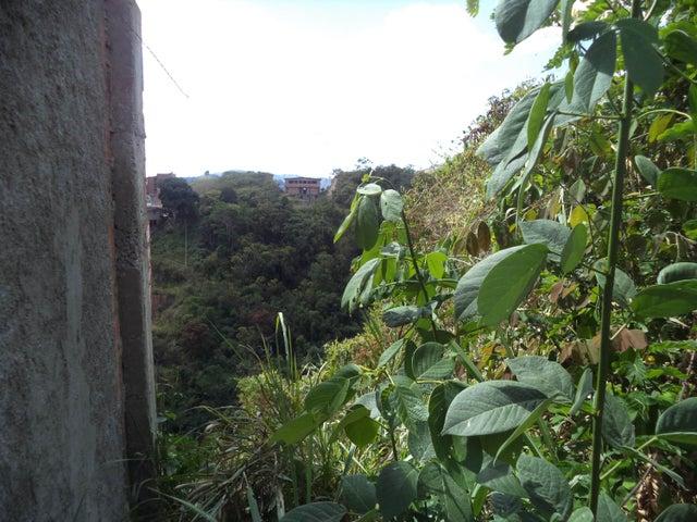 Terreno Distrito Metropolitano>Caracas>El Hatillo - Venta:119.000 Precio Referencial - codigo: 19-11601