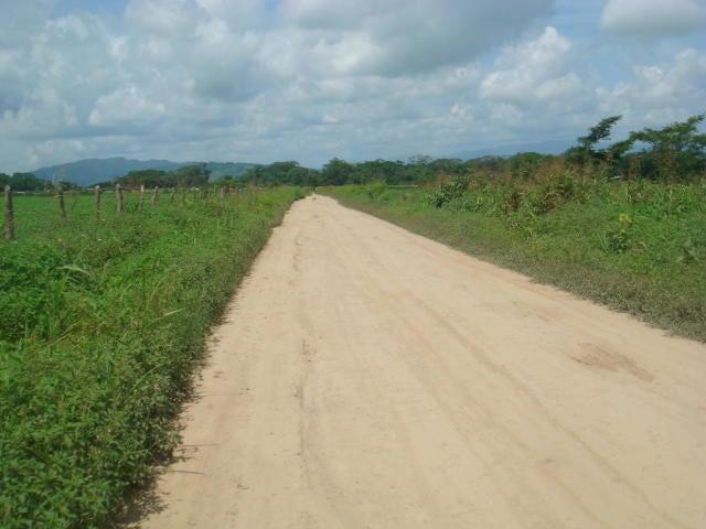 Terreno Yaracuy>Yaritagua>Municipio Peña - Venta:2.200 Precio Referencial - codigo: 19-12875