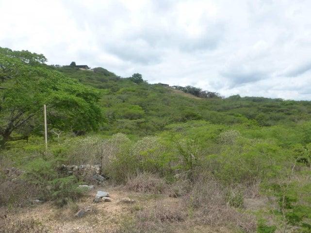 Terreno Lara>Barquisimeto>El Manzano - Venta:500.000 Precio Referencial - codigo: 19-12081