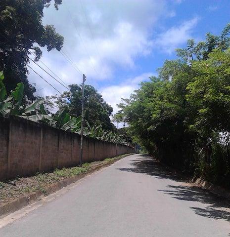 Terreno Carabobo>Municipio Bejuma>Bejuma - Venta:28.000 Precio Referencial - codigo: 19-14274