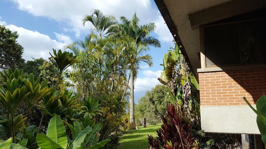Casa Distrito Metropolitano>Caracas>Oripoto - Venta:195.000 Precio Referencial - codigo: 19-15091