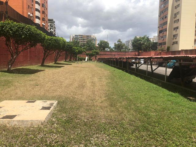 Apartamento Lara>Barquisimeto>El Parque - Venta:38.000 Precio Referencial - codigo: 19-15246