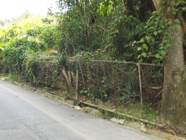 Terreno Distrito Metropolitano>Caracas>Oripoto - Venta:38.000 Precio Referencial - codigo: 19-16097