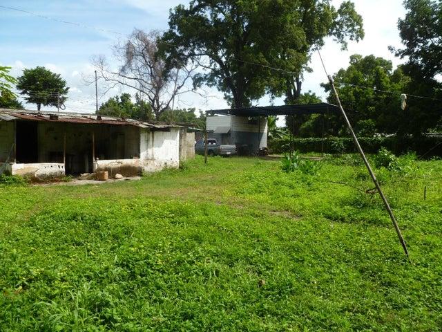 Terreno Carabobo>Municipio Carlos Arvelo>Guigue - Venta:8.500 Precio Referencial - codigo: 19-19375