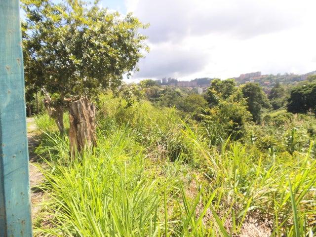 Terreno Distrito Metropolitano>Caracas>La Trinidad - Venta:21.000 Precio Referencial - codigo: 19-19473