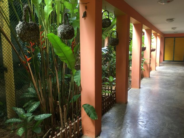 Casa Falcon>Paraguana>Pueblo Nuevo - Venta:280.000 Precio Referencial - codigo: 20-1218
