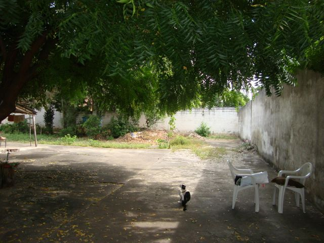 Terreno Lara>Cabudare>La Mata - Venta:7.000 Precio Referencial - codigo: 20-2443