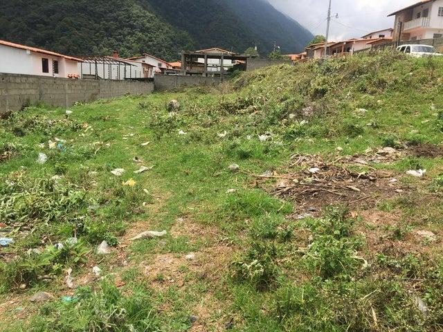Terreno Trujillo>Valera>Via La Puerta - Venta:6.000 Precio Referencial - codigo: 20-2840