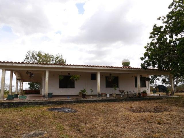 Terreno Lara>Duaca>Municipio Crespo - Venta:15.000 Precio Referencial - codigo: 20-4116