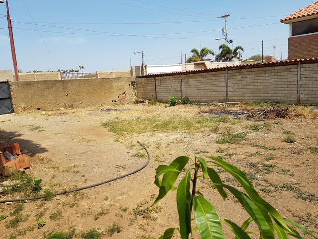 Casa Falcon>Coro>Sector La Floresta - Venta:11.000 Precio Referencial - codigo: 20-4217