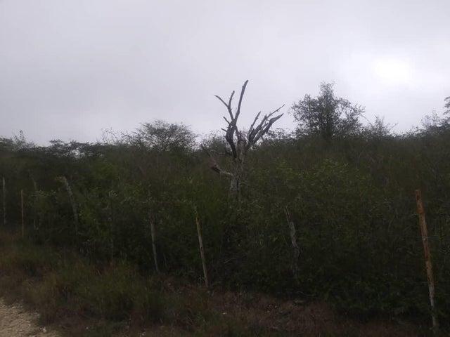 Terreno Lara>Barquisimeto>Parroquia El Cuji - Venta:40.000 Precio Referencial - codigo: 20-6751