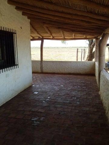 Terreno Lara>Carora>Municipio Torres - Venta:70.000 Precio Referencial - codigo: 20-7682
