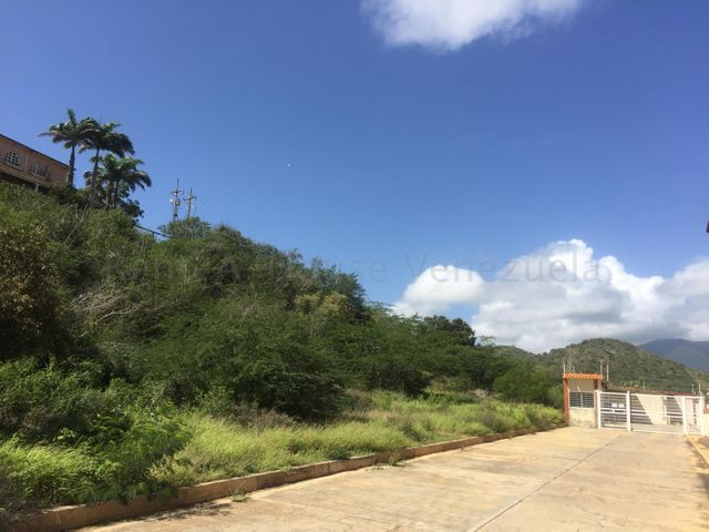 Terreno Nueva Esparta>Margarita>Maneiro - Venta:55.000 Precio Referencial - codigo: 20-9300