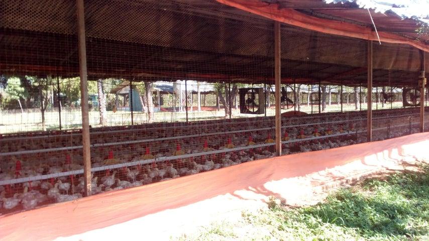Casa Carabobo>Municipio Miranda>Miranda - Venta:2.500.000 Precio Referencial - codigo: 20-9312