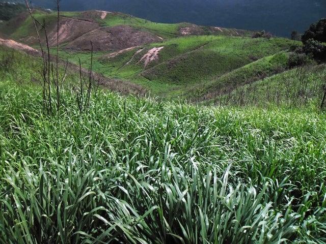 Terreno Distrito Metropolitano>Caracas>El Hatillo - Venta:1.050.000 Precio Referencial - codigo: 20-10416