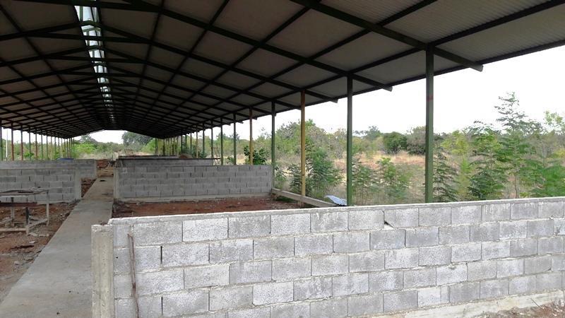 Industrial Guarico>Francisco de Miranda>Piritu Becerra - Venta:150.000 Precio Referencial - codigo: 20-11367