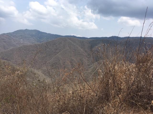 Terreno Distrito Metropolitano>Caracas>Bosques de la Lagunita - Venta:80.000 Precio Referencial - codigo: 20-16878