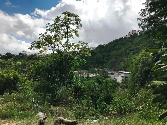 Terreno Distrito Metropolitano>Caracas>Santa Ines - Venta:500.000 Precio Referencial - codigo: 20-12365