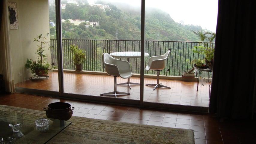 Apartamento Distrito Metropolitano>Caracas>Los Naranjos del Cafetal - Venta:150.000 Precio Referencial - codigo: 20-12625