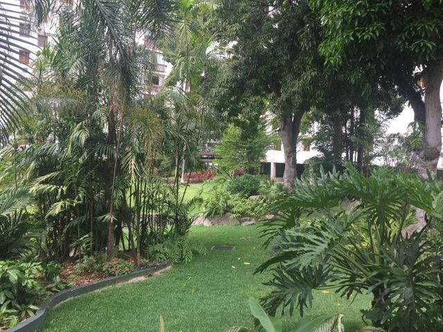 Apartamento Distrito Metropolitano>Caracas>La Castellana - Venta:360.000 Precio Referencial - codigo: 20-13828
