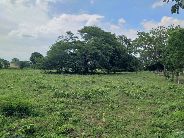 Terreno Zulia>Cabimas>Zulia - Venta:6.500 Precio Referencial - codigo: 20-16193