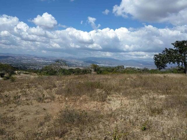 Terreno Lara>Barquisimeto>El Manzano - Venta:25.000 Precio Referencial - codigo: 20-16332