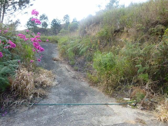 Terreno Distrito Metropolitano>Caracas>Monte Elena - Venta:250.000 Precio Referencial - codigo: 20-17168