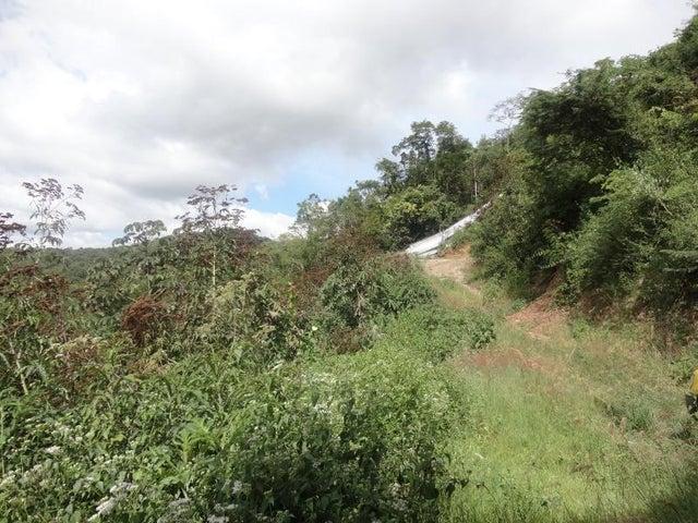 Terreno Distrito Metropolitano>Caracas>Caicaguana - Venta:70.000 Precio Referencial - codigo: 20-20343