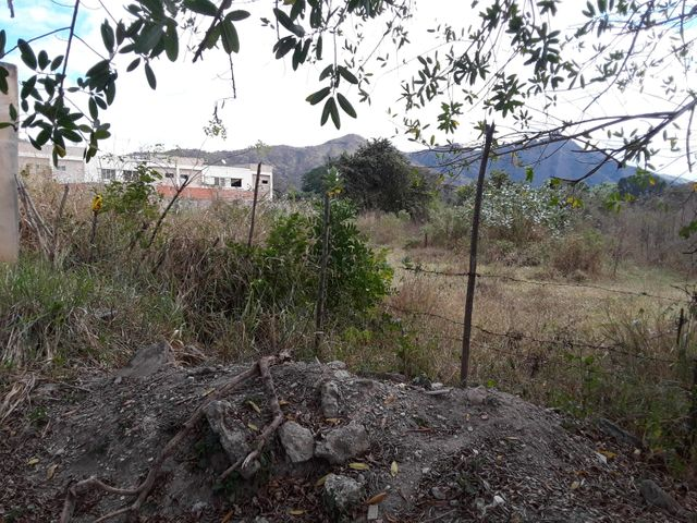 Terreno Carabobo>Municipio San Diego>Monte Carmelo - Venta:6.500 Precio Referencial - codigo: 20-24708