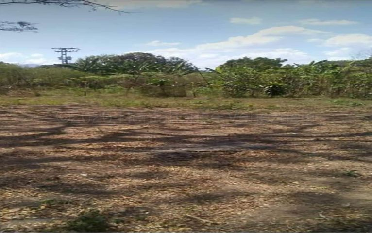 Terreno Carabobo>Guacara>Vigirima - Venta:5.000 Precio Referencial - codigo: 21-2687