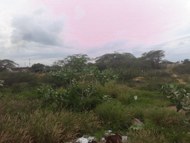 Terreno Falcon>Punto Fijo>Guanadito - Venta:4.000 Precio Referencial - codigo: 21-3070