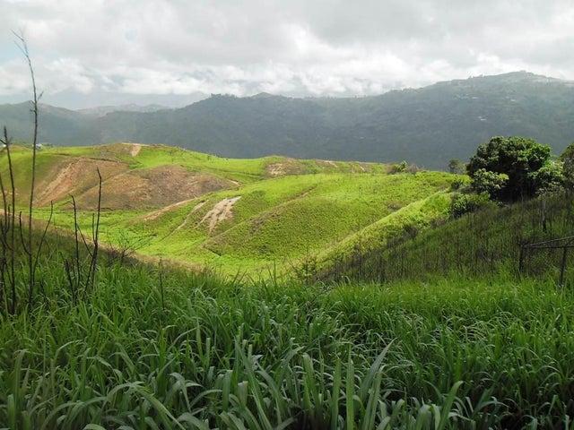 Terreno Distrito Metropolitano>Caracas>El Hatillo - Venta:890.000 Precio Referencial - codigo: 21-3525