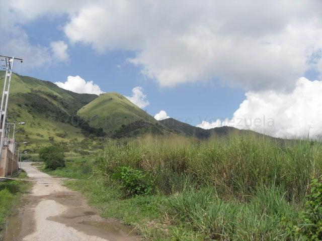 Terreno Carabobo>Guacara>Yagua - Venta:250.000 Precio Referencial - codigo: 21-3831