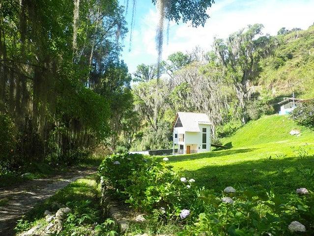 Terreno Merida>Tabay>Buena Vista - Venta:95.000 Precio Referencial - codigo: 21-3839
