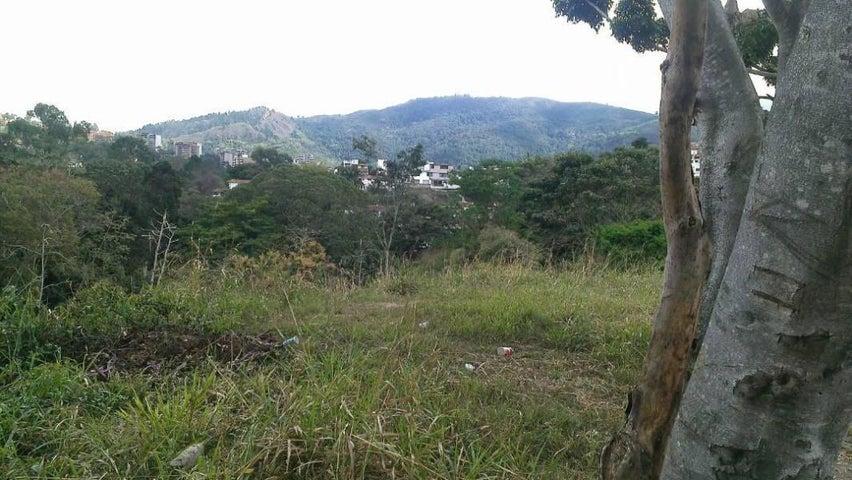 Terreno Distrito Metropolitano>Caracas>La Trinidad - Venta:94.000 Precio Referencial - codigo: 21-4569