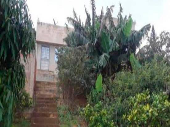Casa Falcon>Sierra de Falcon>Curimagua - Venta:65.000 Precio Referencial - codigo: 21-4861