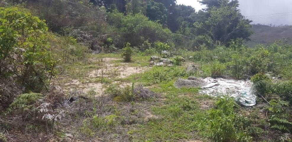 Terreno Distrito Metropolitano>Caracas>El Junquito - Venta:7.000 Precio Referencial - codigo: 21-7083
