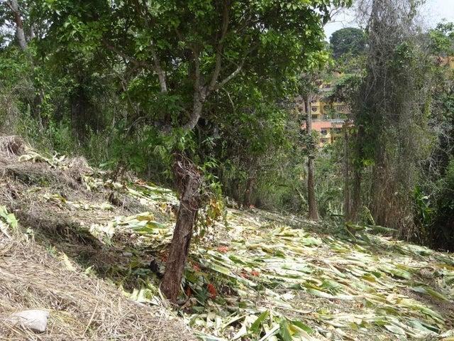 Terreno Distrito Metropolitano>Caracas>La Lagunita Country Club - Venta:68.000 Precio Referencial - codigo: 21-7827
