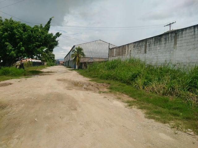 Terreno Carabobo>Guacara>Carret Guacara - San Joaquin - Venta:150.000 Precio Referencial - codigo: 21-8743